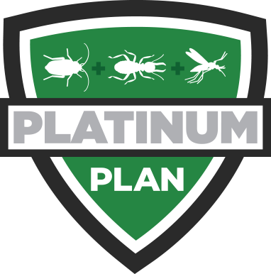 platinum plan icon